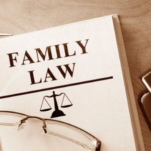 family law casebook
